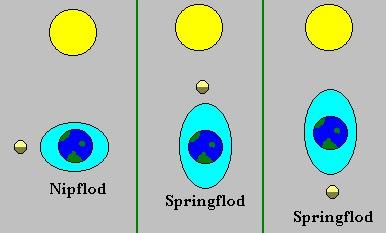 hvad er størst solen eller månen